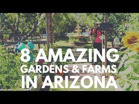 8 AMAZING Gardens & Farms in ARIZONA