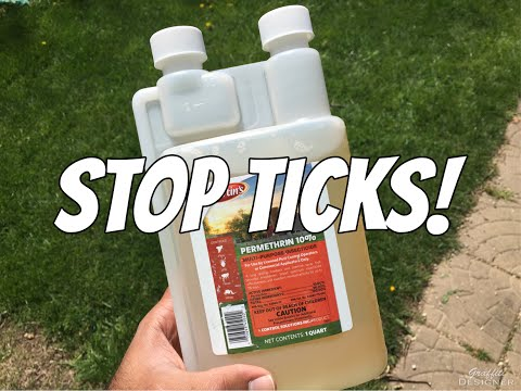 How to avoid ticks and bugs: Treating my hiking clothes with permethrin