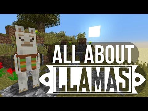 Llamas: Taming, Breeding & More - Minecraft