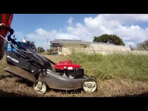 Lawn care, Rain, Hail and Shine  Long grass  weigh in #3 V14