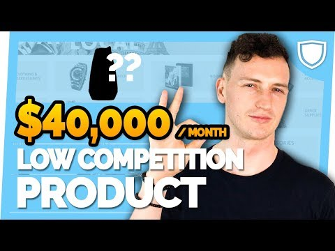 $40,000 per month Low Competition Amazon FBA Product Opportunity