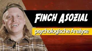 Download 📀 Finch Asozial • Psychologische Analyse: Humor, Rhetorik, Erlebnistypus Video