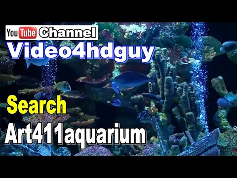 Roku How To Video make Aquarium or Fireplace with Free YouTube Videos | art411adv™