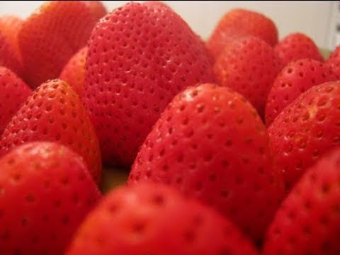 How-To Freeze Strawberries
