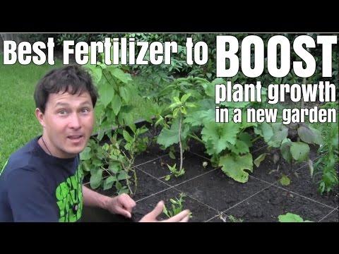 Best Fertilizer to Boost Plant Growth in a New Garden
