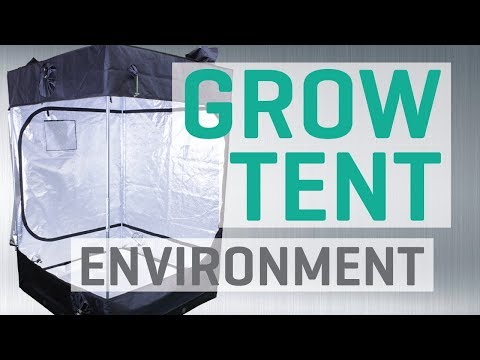 5 Grow Tent Environment Problems