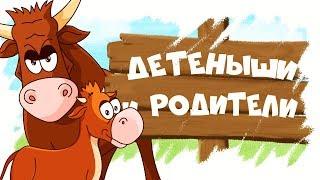 Download Домашние животные и их детеныши! Развивающие мультики для детей! Video