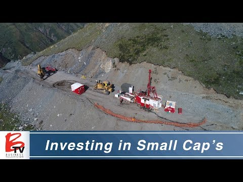Analyst Thoughts on Investing in Small Cap Companies - Brent Todd
