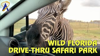 Wild Florida Drive-Thru Safari Park