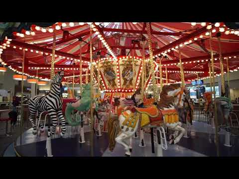 Carousel with a service dog at Concord Mills Mall