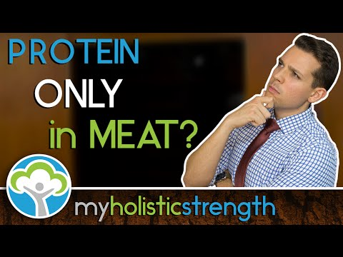 Amino Acids, Complete & Incomplete Proteins | MEATLESS Sources