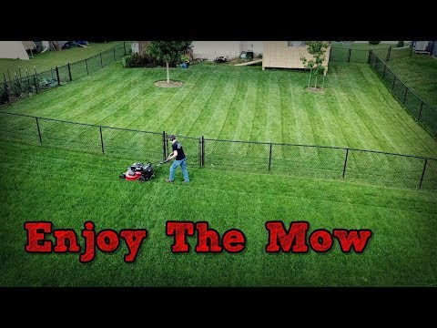 Lawn Mowing With The Toro Timemaster