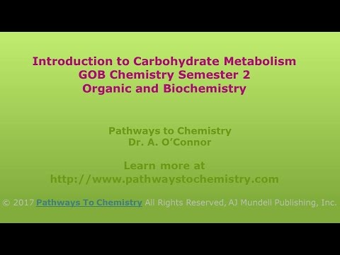 Introduction to Carbohydrate Metabolism