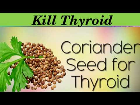 Reset Your Thyroid Using Only Coriander Seeds
