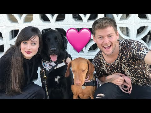 OUR SERVICE DOGS WENT ON A DATE! (live footage) W/ Stella & Drew Lynch!
