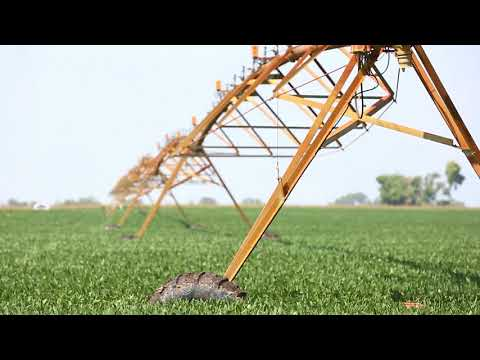 Drones helping farmers increase yields