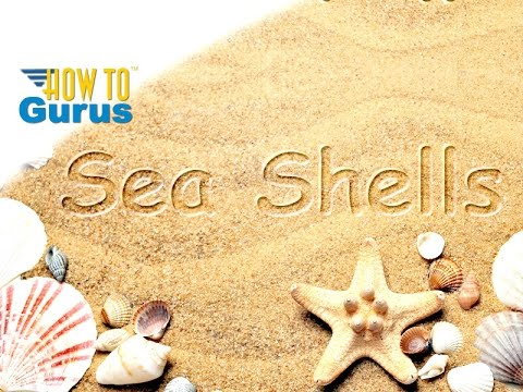How to Put Text into a Sandy Beach in Adobe Photoshop Elements 2018 15 14 13 12 11 Tutorial