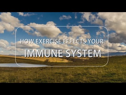How Exercise Effects Your Immune System