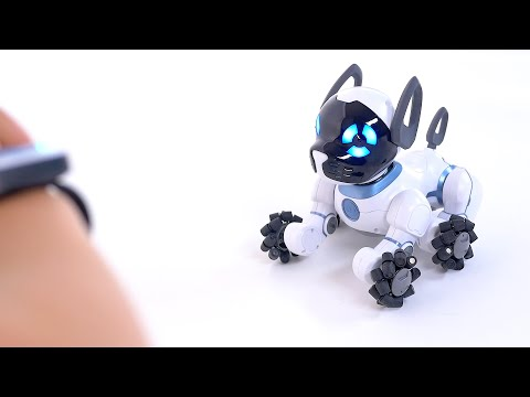 Tutorial: Getting Started with your CHiP Robot Dog!