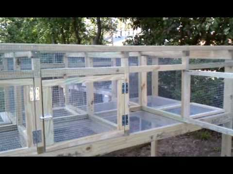 Building rabbit + chicken cage. Part 5