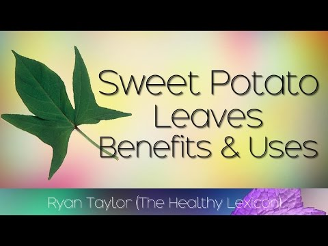 Sweet Potato Leaves: Benefits and How To Grow