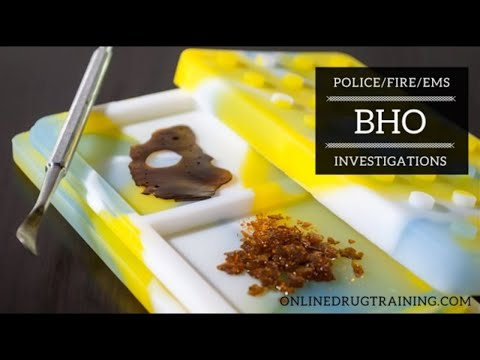 Online Training in BHO Lab Investigations