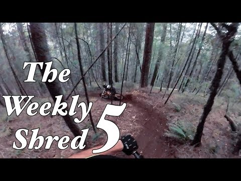 Riding with Rylo - Weekly Shred 5 - Mini Edit Monday