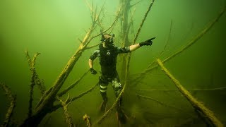 Treasure Hunting a Creepy Underwater Forest!! (Found GoldMine)