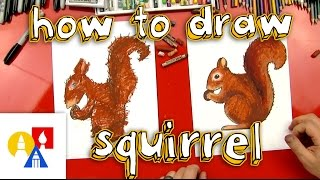 How To Draw A Squirrel Sya