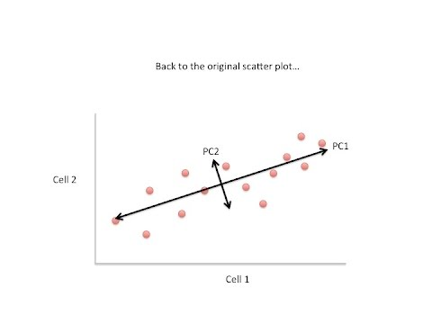 StatQuest: Principal Component Analysis (PCA) clearly explained (2015)