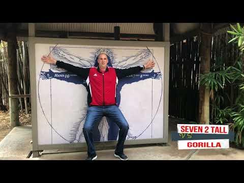 7-FOOT-2 vs GORILLA ;who is taller ?   l Seven 2 tall