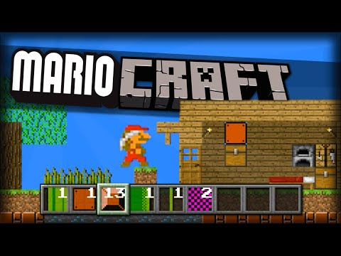 MINECRAFT CUSTOM LEVELS!? BUILD In Mario!! | Mari0