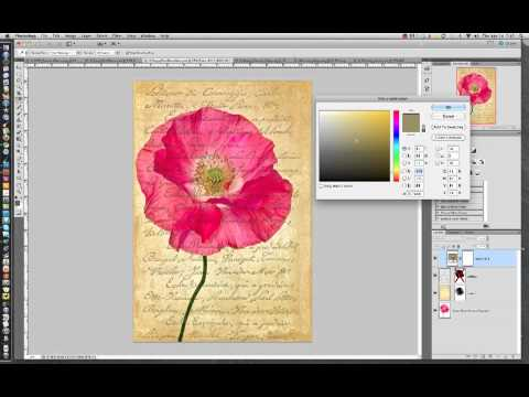 Solid Color Adjustment Layers in Photoshop