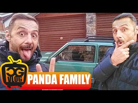 One Panda wasn't enough - CG VLOG #302
