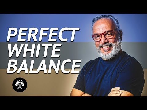 How to get Perfect In-Camera White Balance ? - Viilage Wisdom