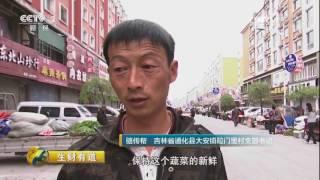 """20170703 生财有道  吉林通化县:绿水青山间的""""生态银行"""""""