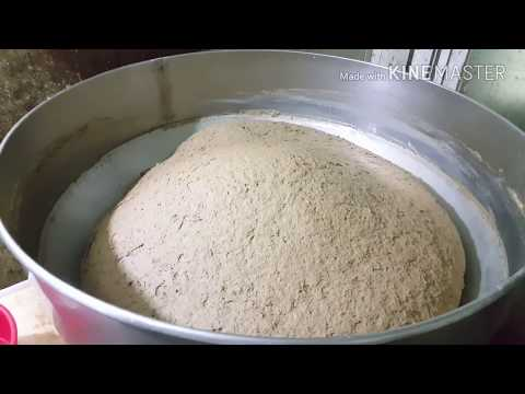 How to make fish food