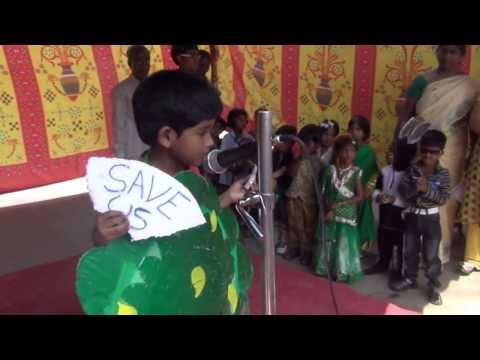 FANCY DRESS COMPETITION 2013   LKG STUDENT AS A TREE
