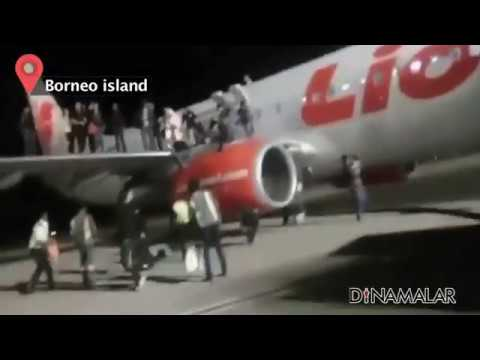 Viral Video : Passengers to jump from plane's wing, 10 injured
