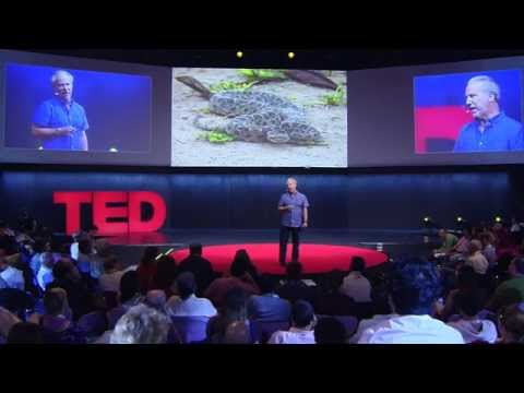 Mark Plotkin: What the people of the Amazon know that you don't
