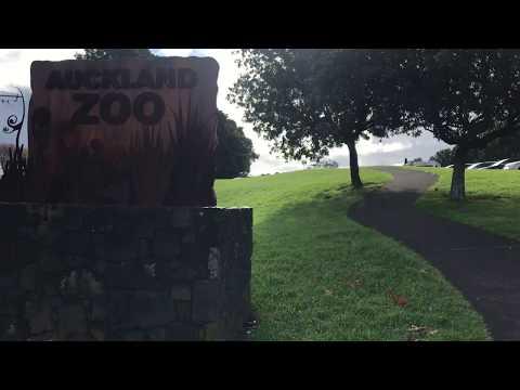 Let's explore Auckland Zoo🥾🥾
