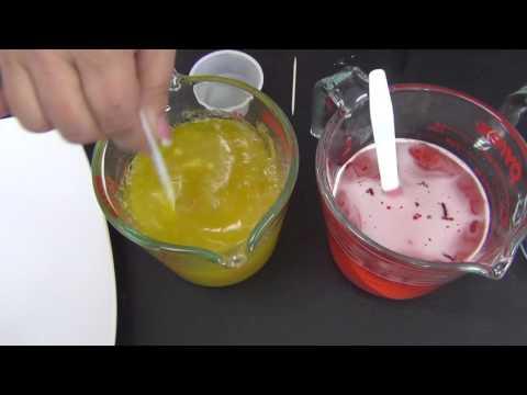 Homemade Gummy Bears     Homemade Gummy Everything!