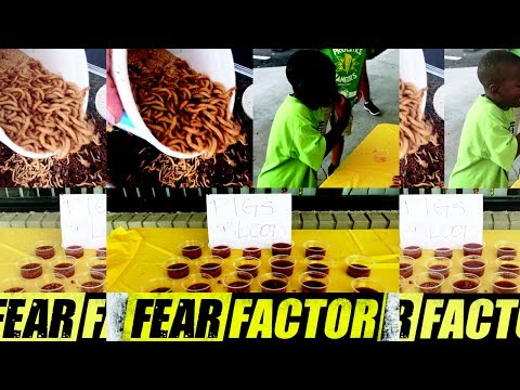 FEAR FACTOR WITH OUR SUMMER CAMP KIDS