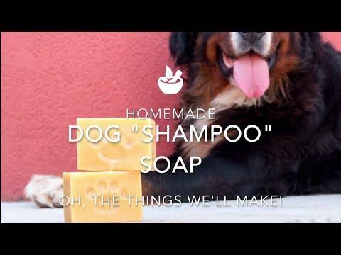 How to Make a Homemade Dog Shampoo Soap Bar