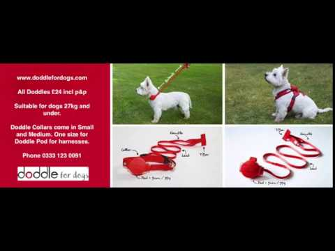 Doddle dog lead for Harnesses