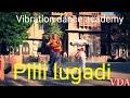 Pili Lugadi Rajasthani Dance Tadka Choreography By Surendra Singh Rathore mp3