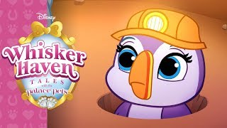 Tunnels of Fun | Whisker Haven Tales with the Palace Pets | Disney Junior