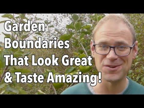Garden Boundaries That Look Great & Taste Amazing!