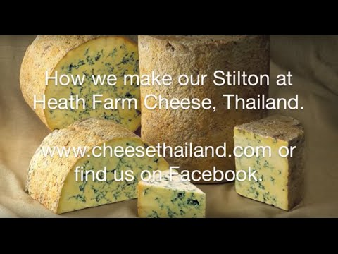 Our complete recipe for making Stilton Cheese