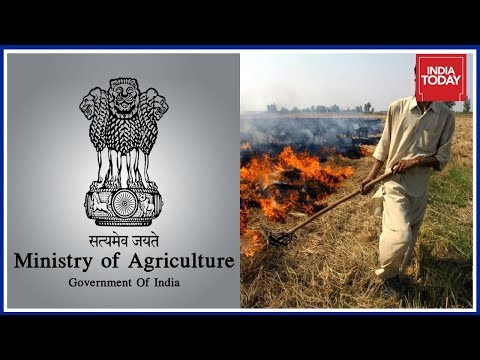 Agriculture Ministry Denies Subsidy To Punjab, Haryana Farmers To Tackle Stubble Burning Issue